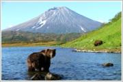 <H3>«Камчатская охота на медведя, лося, барана»</H3>